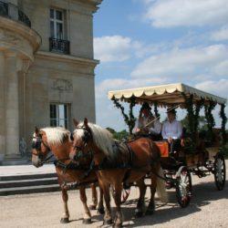 Attelage en paire Relais & Chateaux