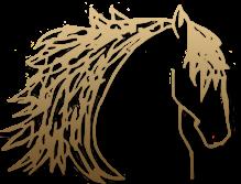 logo-lenoir.png