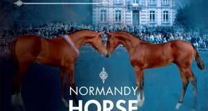 Affiche du Normandie Horse Day