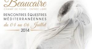 Fête du cheval à Beaucaire