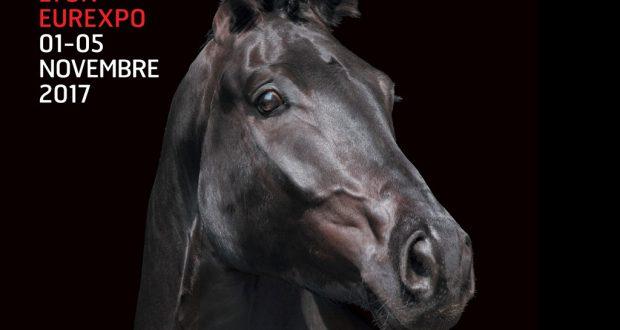 Lyon euro expo cheval
